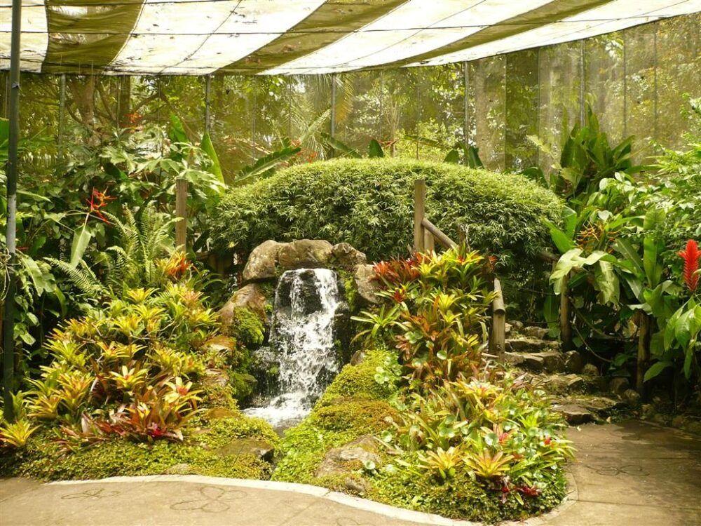 ¿Cómo llegar al Jardín Botánico del Quindío, Colombia?